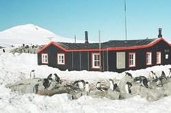 Port Lockroy, Antarctica. BODC staff finally go on field work.