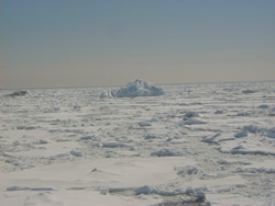 Ice floes in Antarctica