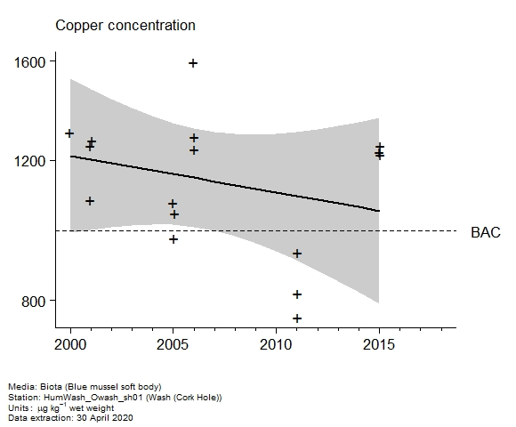 Raw data with assessment of  copper in biota at Cork Hole (Wash)