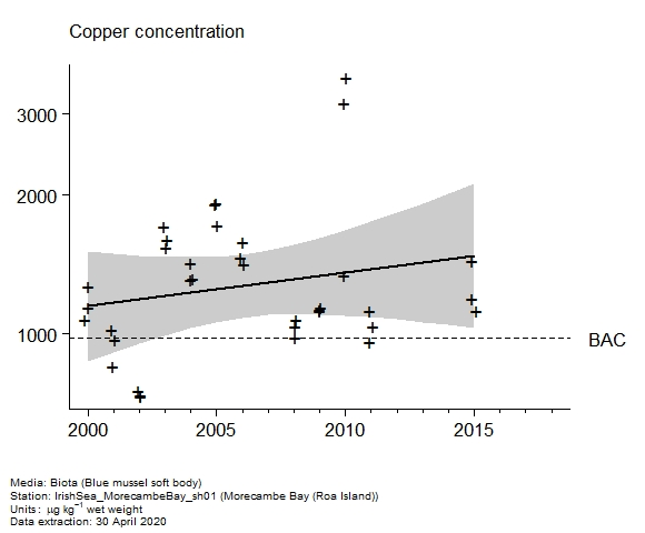 Raw data with assessment of  copper in biota at Roa Island (Morecambe Bay)