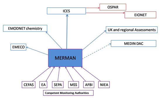 Flow diagram showing the flow of MERMAN's data