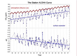 Data from the Hawaii Ocean Time Series (HOT) and the Mauna Loa Observatory (adapted from Dore et al. 2009).