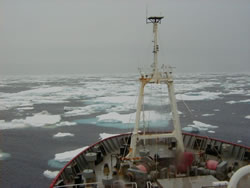 RRS James Clark Ross cruise in Antartica